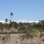 paysage-maroc-tourisme solidaire-au ceour des peuples