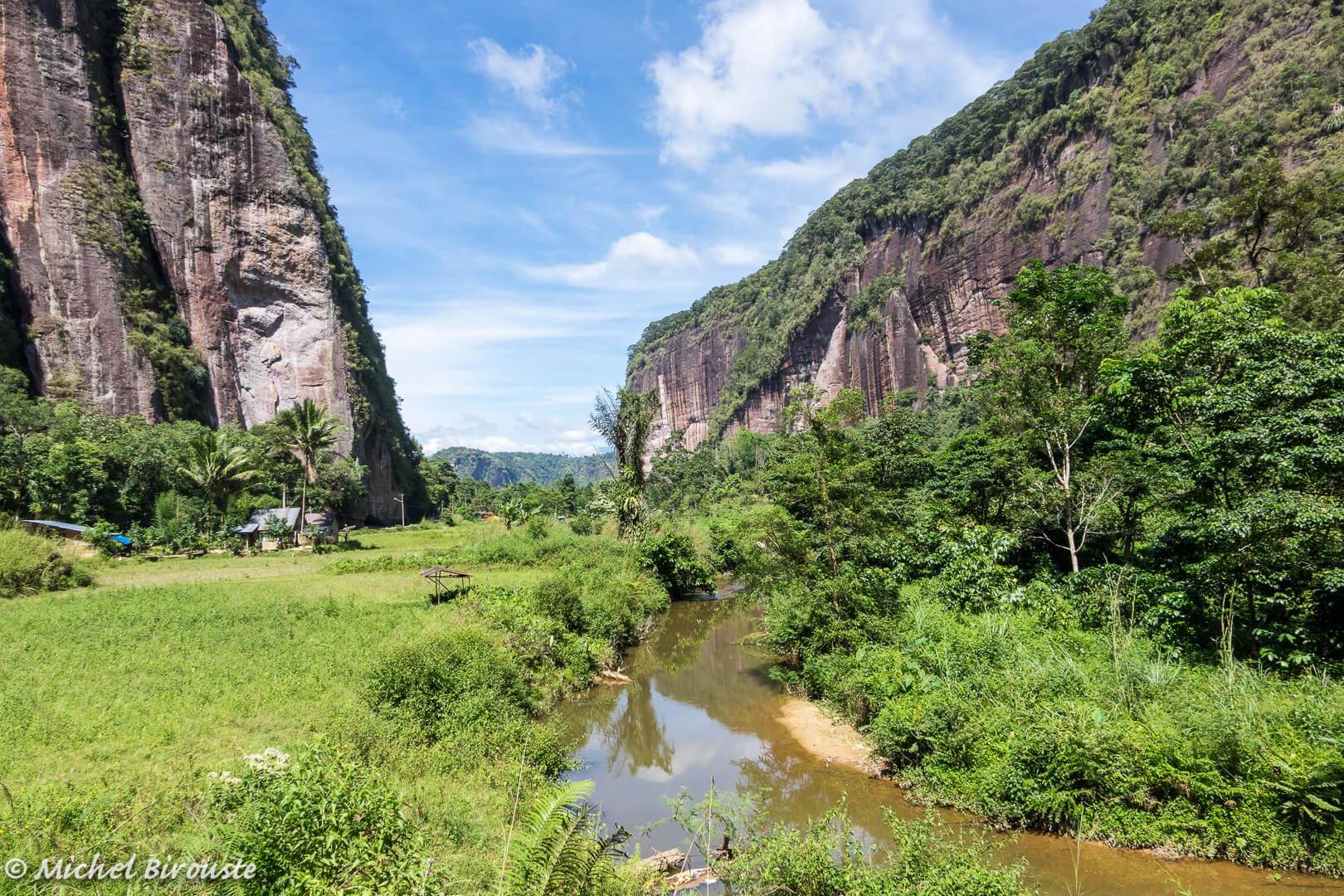 Indonesie-formalites-Sumatra-balade-paysage-vegetation-nature